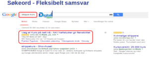 strippe kurs søk i Google