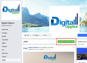 Facebook jobbinnlegg knapp
