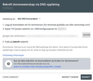 Bekreft eierskap på Google Tag Manager DNS oppføring