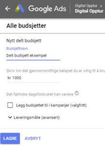 Delt budsjett i Google Ads oppsett